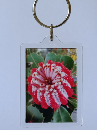 Banksia Key Rings