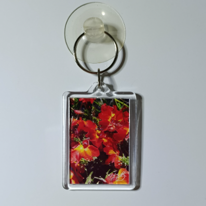 Wildflower Key Rings